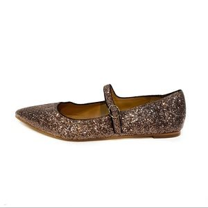 NWOT J.Crew Bronze Glitter Pointed Mary Jane Flats